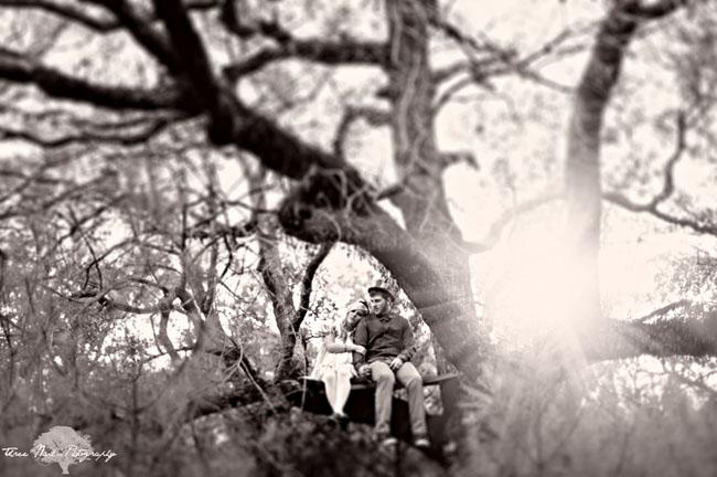 wonderland engagement photos 14 Under the Veil of a Fairytale