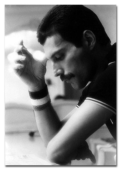 freddie mercury 11 Freddie Mercury