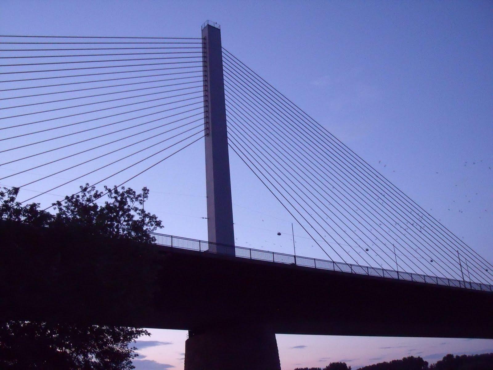 kb5 Najlepši mostovi sveta   specijal: Mostovi Rajne