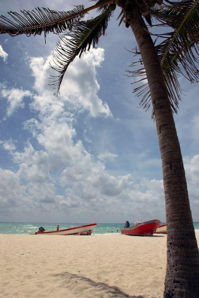 400724 10151632838147517 898639628 n Manga Trip: Meksiko, raj na Karibima