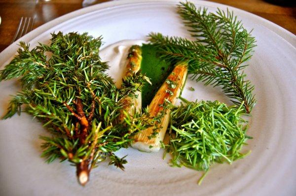 bela i zelena spargla Šumski jelovnik