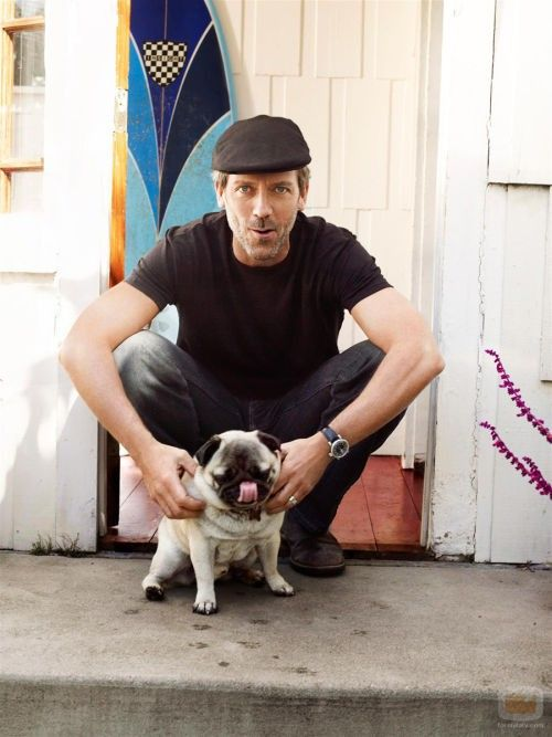 gregory house hugh laurie with pug dog Psi poznatih: Trendovi u 2011.