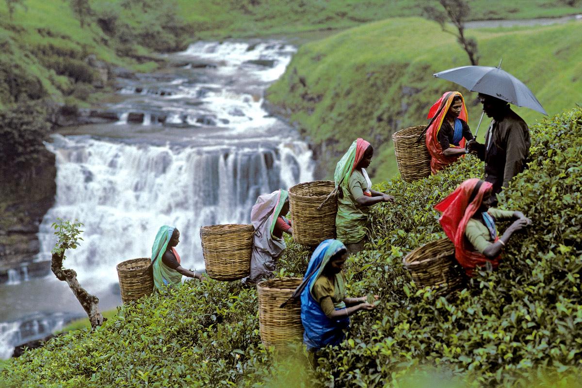 opr0p2qt Steve McCurry   mag fotografije