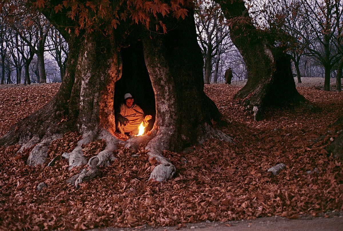opr0p2sz Steve McCurry   mag fotografije