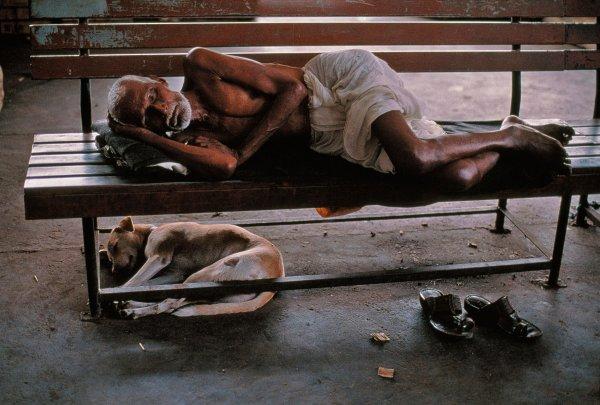 opr0p62e Steve McCurry   mag fotografije