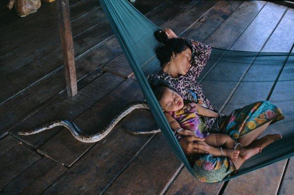opr0p62m Steve McCurry   mag fotografije