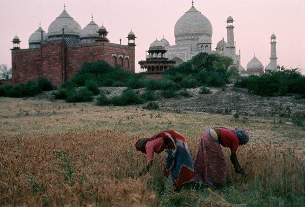 opr0paab Steve McCurry   mag fotografije