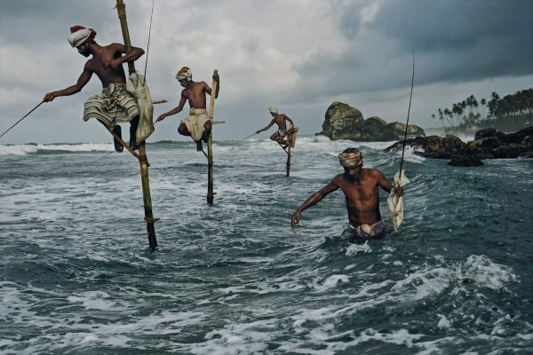 opr0pawz Steve McCurry   mag fotografije