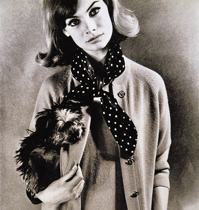 6a0120a6a93724970b0120a9608fcf970b 800wi Supermodel šezdesetih: Jean Shrimpton