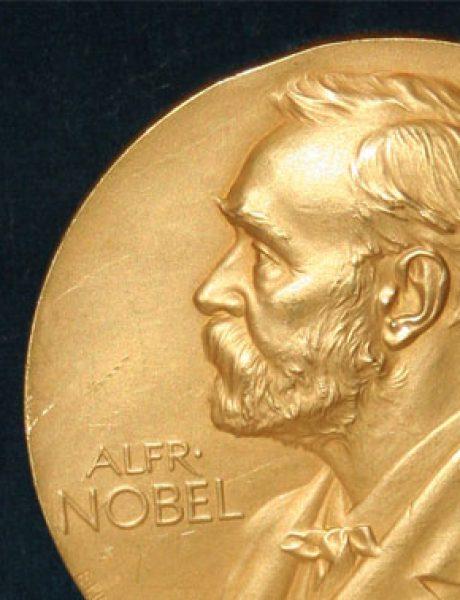 Nobel i ljudska prava