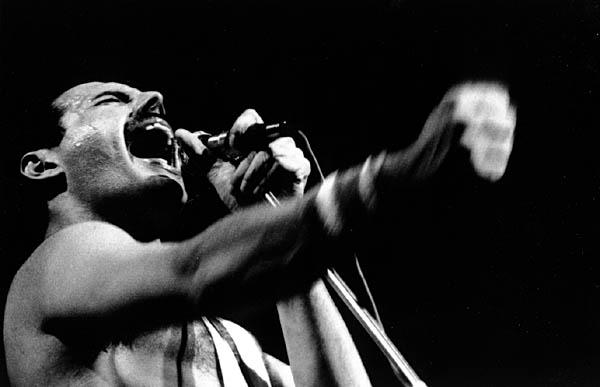 freddie mercury 12 Freddie Mercury