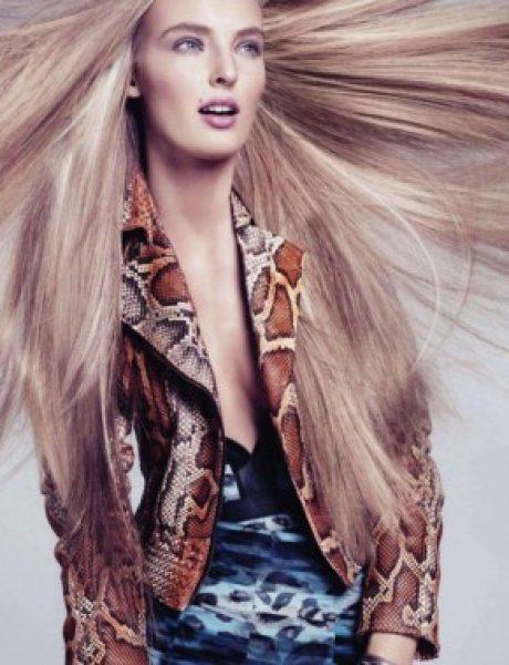 Ymre Stiekema za Harper's Bazaar US