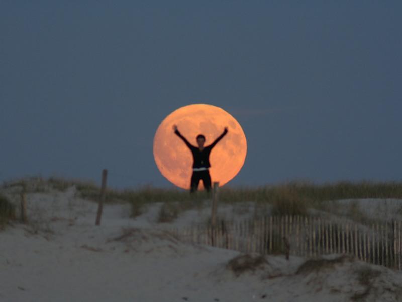 ATT00040131 Mesečeva umetnost