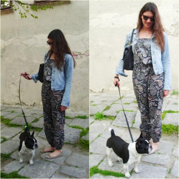 cats 1 Belgrade Style Catcher: Last Week of April