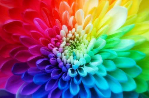 simbolika Uloga boja u životu čoveka