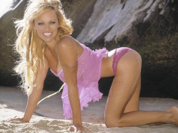 Pamela Anderson 1500x1125 221kb media 179 media 107025 1152829508 Plavuše su glupače