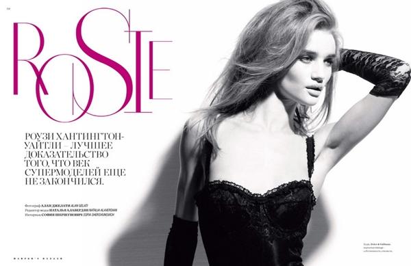 201 Engleska ruža Rosie Huntington