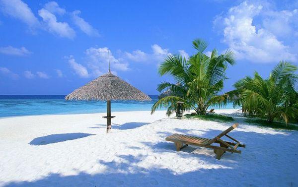 Maldivi plaza Maldivi   koralne oči okeana