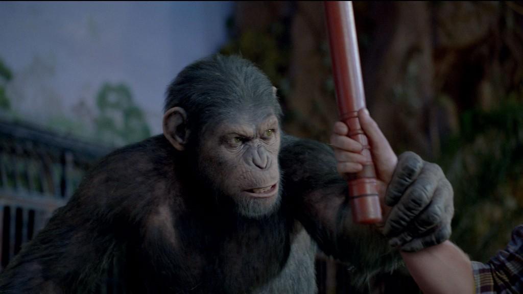 Planeta majmuna 1024x576 Avgustovski filmski koktel