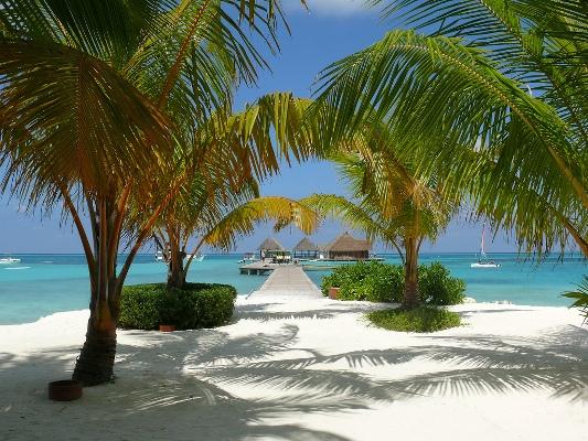 Worlds beautiful islands maldives island Mesta koja neće postojati u sledećem veku