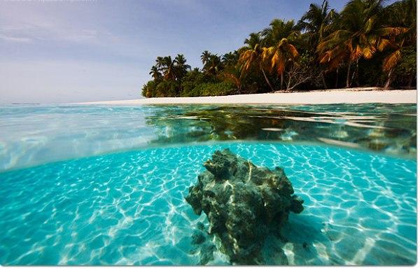 cool maldivian beach travel 874578678 Maldivi   koralne oči okeana