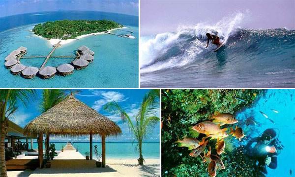 getpicture.asp  Maldivi   koralne oči okeana