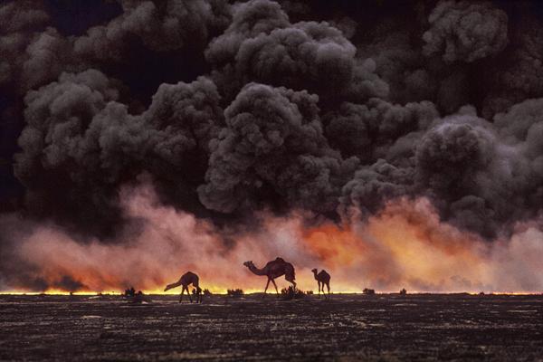opr0P48F Steve McCurry   mag fotografije