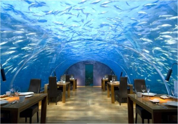 rangaliisland3s Maldivi   koralne oči okeana