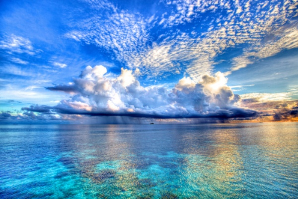 tumblr lhnv4pSVpX1qb62c4o1 500 Maldivi   koralne oči okeana