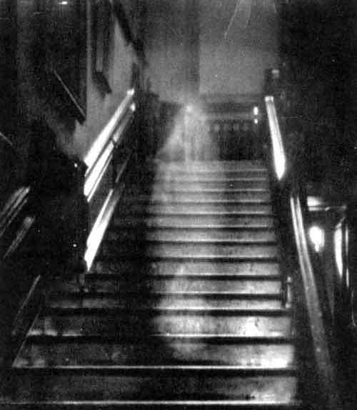 BrownLady Paranormalna Srbija