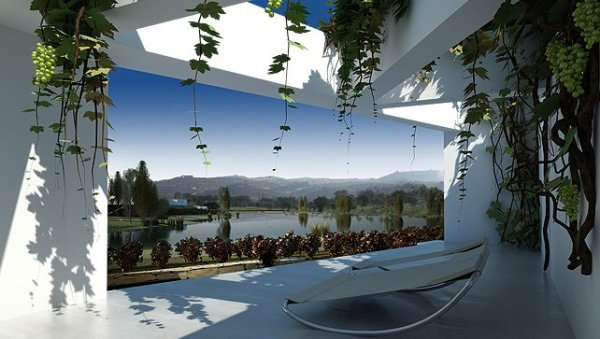 balcony vineyard view Moderan dizajn: vinograd i vila