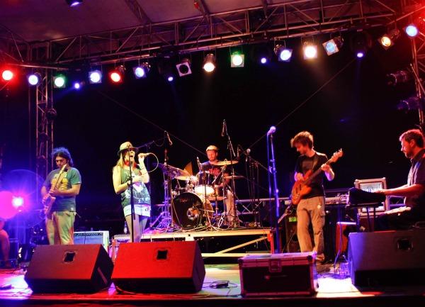 nat Forest Fest 2011