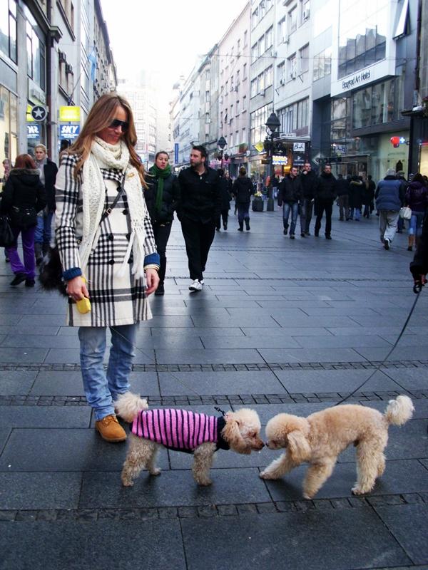 BSC 32 Belgrade Style Catcher: Stiže zima