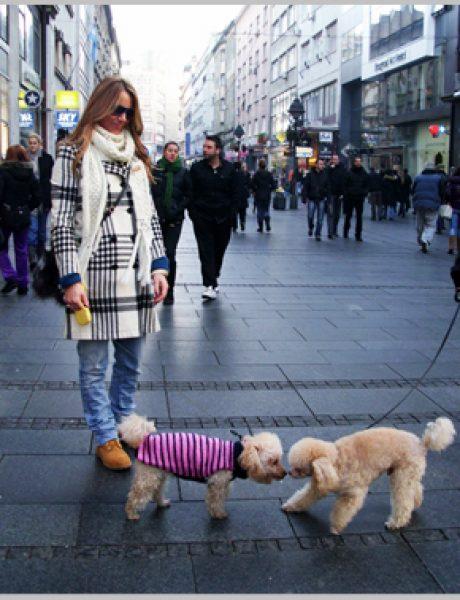 Belgrade Style Catcher: Stiže zima