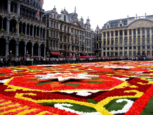 Slika 417 Trk na trg: Grand Place, Brisel