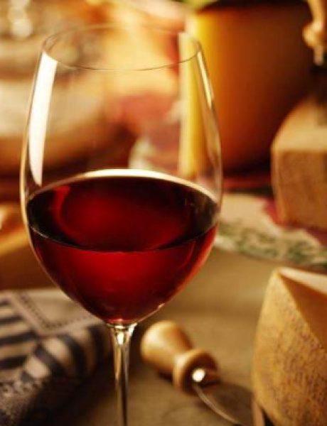 Mediteraneo – festival vina, gastronomije i vinskog turizma