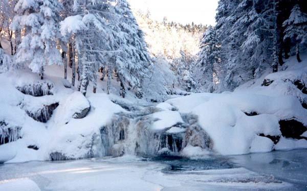 2451 U Tursku na zimovanje: Uludag