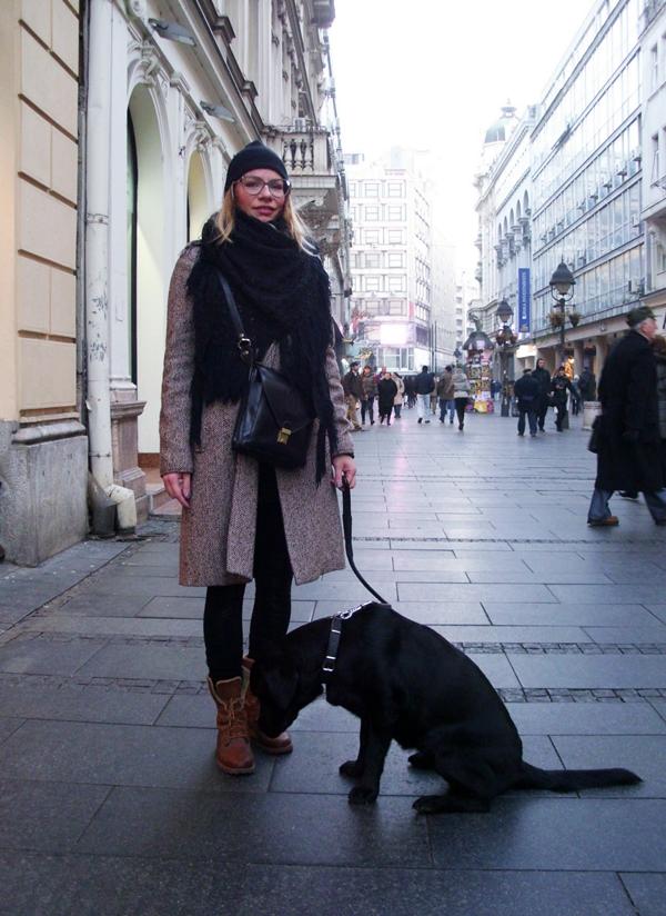 BSC 1 Belgrade Style Catcher: Prvi dani decembra