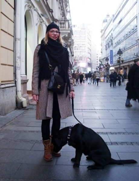 Belgrade Style Catcher: Prvi dani decembra