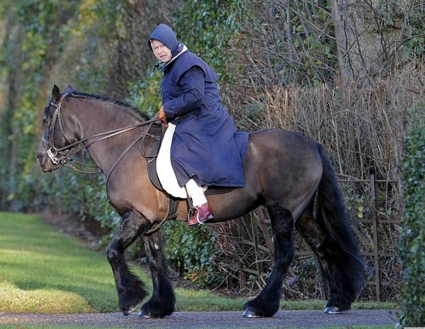 Kraljica Elizabeta jase konja Stil moćnih ljudi: 60. dijamantski jubilej   bakuta je neuništiva