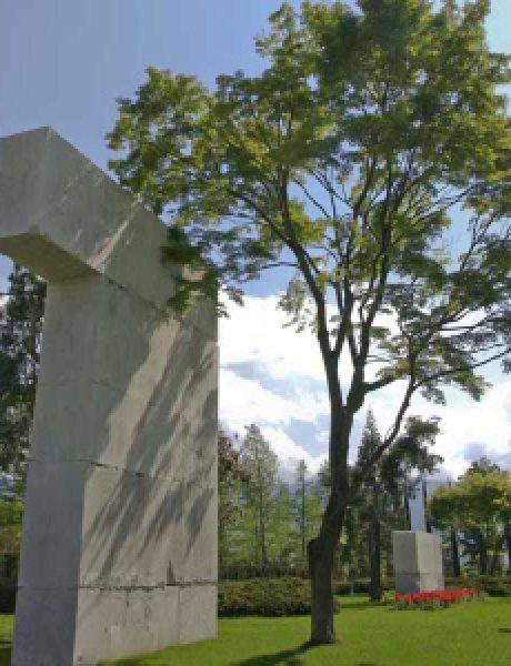 Muzej drveća