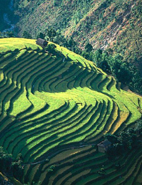 Produhovljeni krov sveta: Nepal