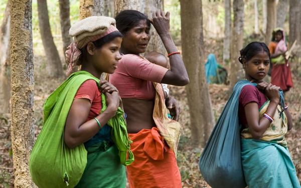 448 Bangladeš: Neobičan i uzbudljiv