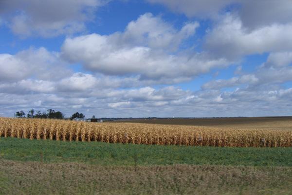 159 U zemlji Amiša i kukuruznih polja
