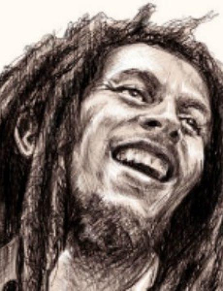 """Marley"" i vi"