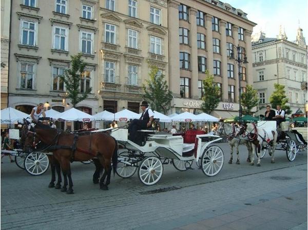Slika59 Trk na trg: Rynek Główny, Krakov