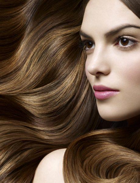 Pet lakih i prirodnih recepata za mekanu kosu