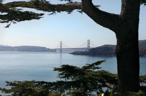 700 belvedere house 2 Enterijer i dom: San Francisko na drugačiji način