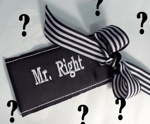 Mr Right4 Gospodin Pravi: Još malo pa hejterska verzija