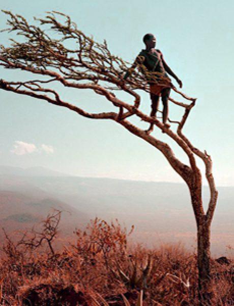 Filmski turizam: Čarobni pejzaži i čuda prirode sa filmskog platna